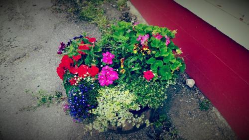 Egans-Bar-Bouquet